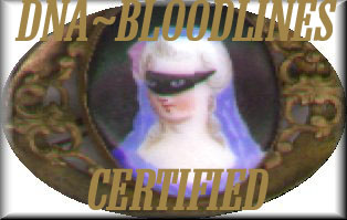 DNA Bloodlines Certification in Process